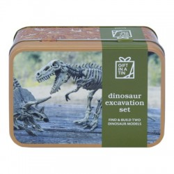 Dinosaur Excavation Set